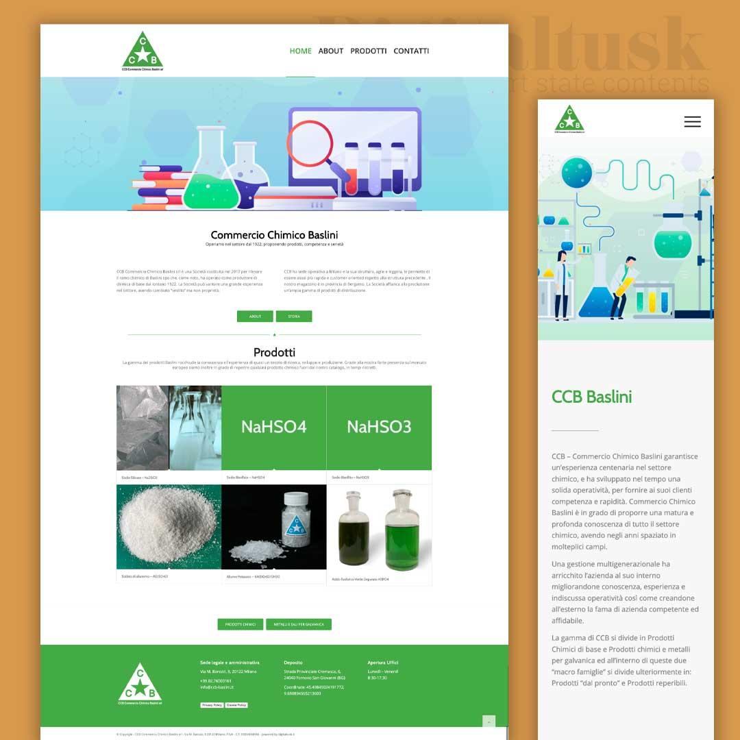 ccb commercio chimico baslini portfolio web